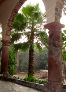 A view of the courtyard at the Instituto de Allende in the rain