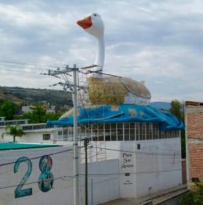 Azotea -- el pato gigante